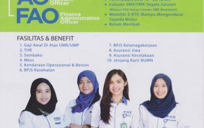 Lowongan Kerja BUMN (PT. Permodalan Nasional Madani)